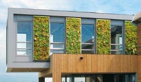 Beliebt Fassadenbegrünung und Bauwerksbegrünung - gesundes Haus EH74