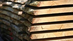 Holzbretter Mit Rinde nachhaltiges holzskelett solid wie stahl und beton gesundes haus